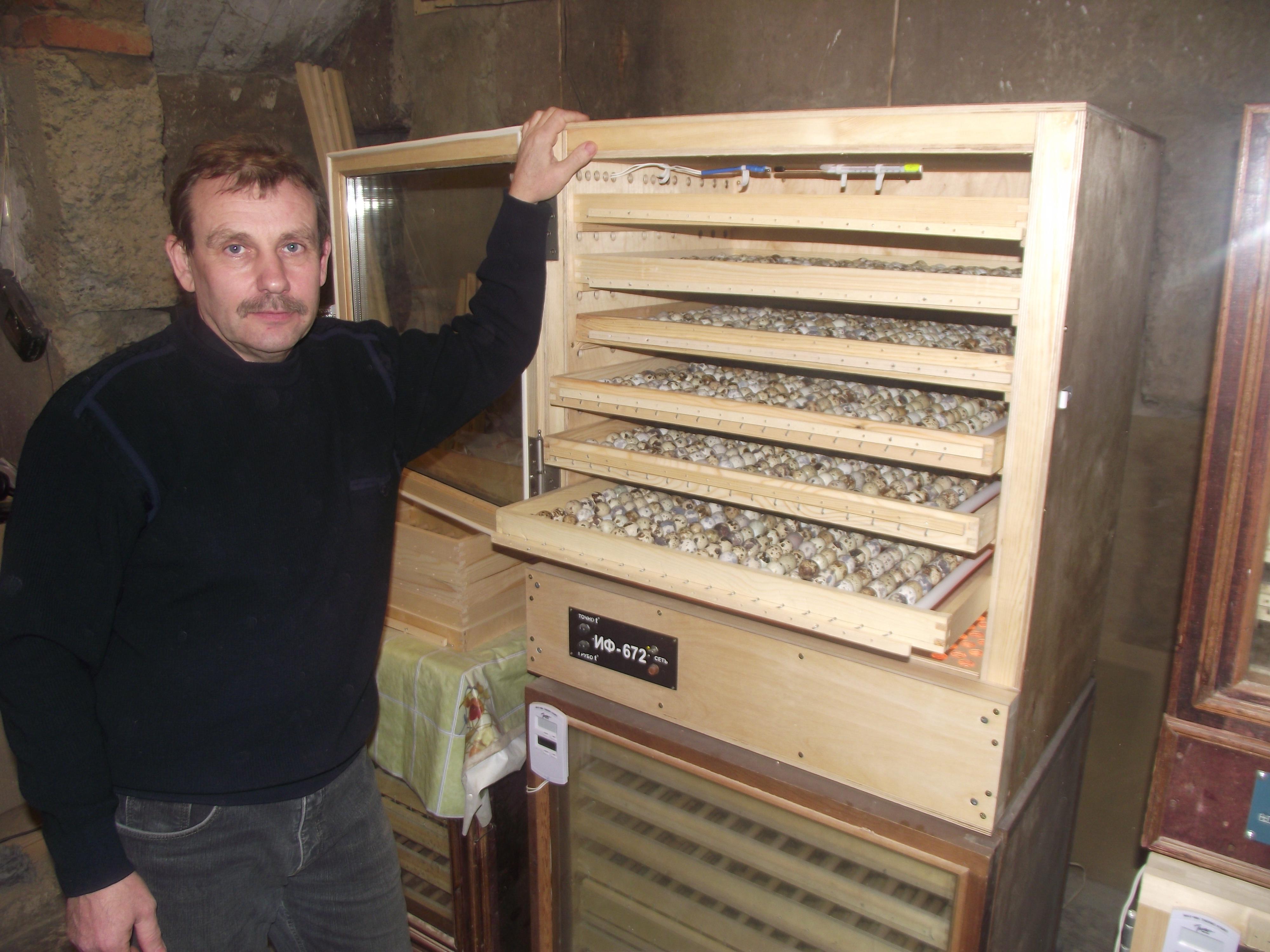 Инкубатор для яиц фермерский ИФ-672