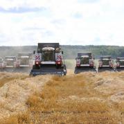 Услуги по уборке урожая в режиме МТС.jpg