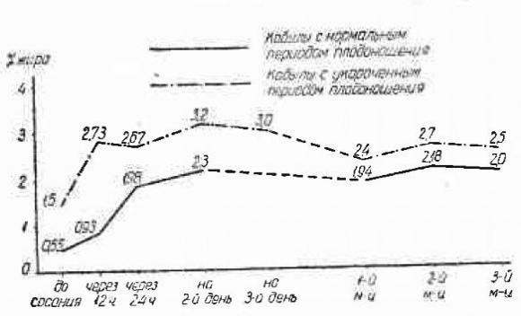 Взаимосвязь сроков плодоношения с составом кобыльего молозива и молока, график 1