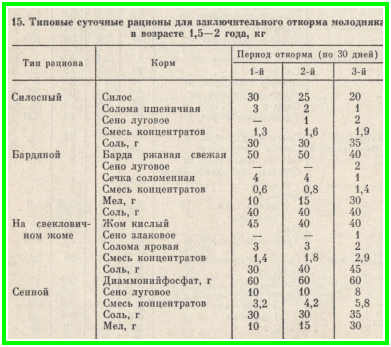 Режим питания годовалого бычка Самые интересные факты обо всем Tattoodima.ru