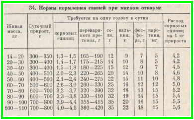 письмо адресовано сколько литров крови в свинье карта
