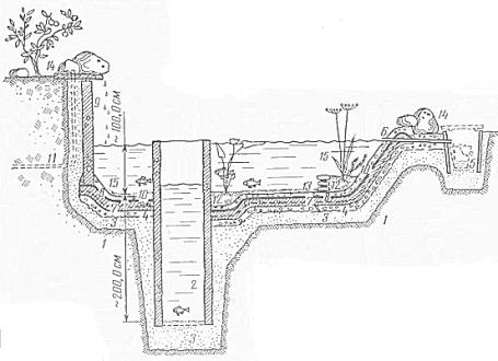 Сооружение собственного пруда