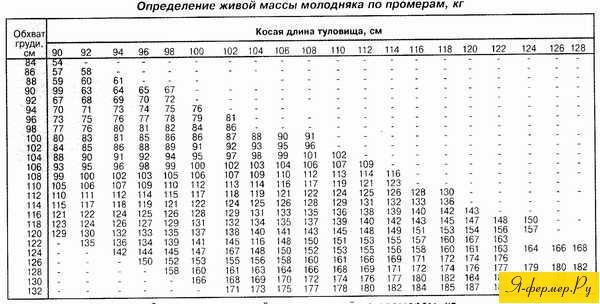 как измерить вес коровы лентой