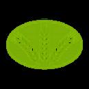 Аватар пользователя istokagro