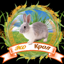 Аватар пользователя Vyacheslav F