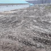 Немного негатива: грязь надоела!
