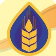 logotip_region_partner.jpg