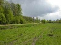 Новая дорога в сторону деревни Гришино.