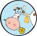 животноводство, общие вопросы животноводства, секреты животноводства и животноводов