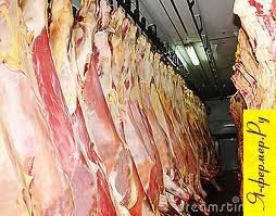 Клеймение мясных туш