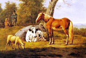 породы коров, лошадей, овец