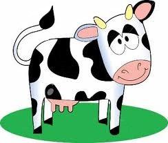 Как проверить корову на стельность своими силами