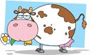 крупный рогатый скот, корова, КРС