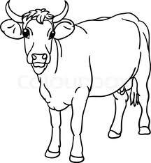 Заморозка кормов для сельскохозяйственных животных в брикетах