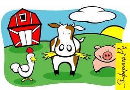 Средства щитовидной железы: описание и использование в животноводстве