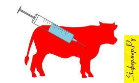 Гормональные препараты: описание, группы. Нехватка гормонов в организме животного