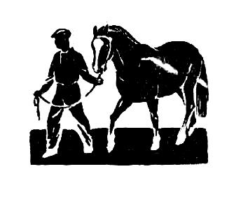 Картофель в кормлении лошадей