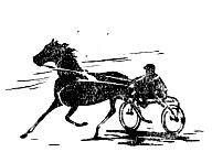 Какой должна быть дорожка для рысистых испытаний лошадей