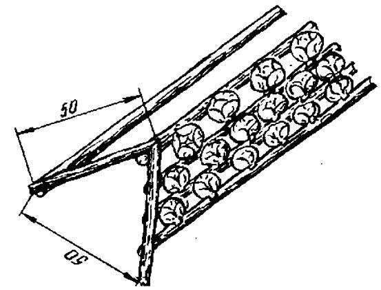 «Горка» из жердей для капусты