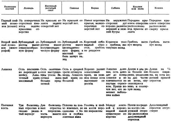 Определение происхождения мяса сравнительно-анатомическим методом