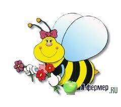 условия содержания и разведения пчел