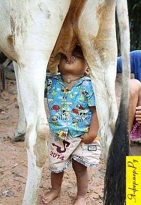 Будущий фермер приучается работать без посредников.