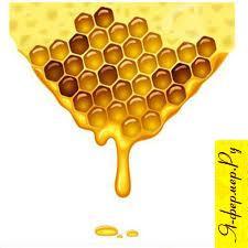 Бурачниковый мёд: описание, применение и рецепты