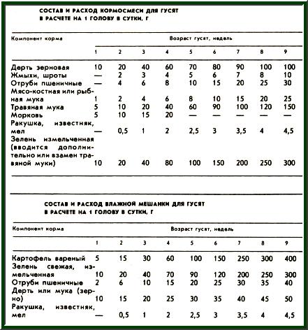 состав и расход кормов для гусят, таблица