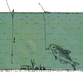 Двойной поплавок рисунок