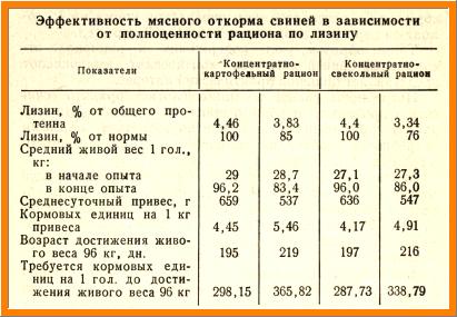 эффективность мясного откорма свиней в зависимости от полноценности рациона по лизину, таблица