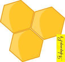 Подсолнечниковый мед: описание, применение, рецепты
