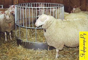 Кормушка для овец круглой формы