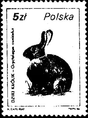 Кролик на почтовой марке