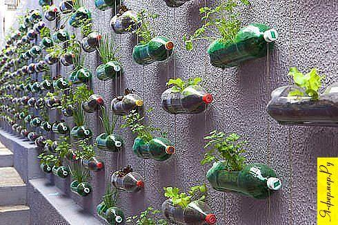 Как выращивать овощные и др. культуры в условиях нехватки пространства