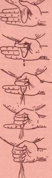 Техника доения коров. Техника доения кулаком.