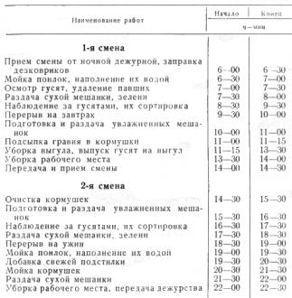 Таблица приблизительный распорядок дня птичницы при выращивании гусят до 20-30-дневного возраста