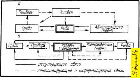 Принципиальные схемы механизации кормления рыб