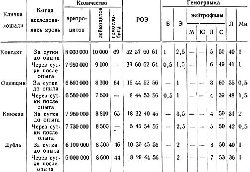 Результаты исследования крови у лошадей до скармливания и после скармливания повышенных доз фенотиазина