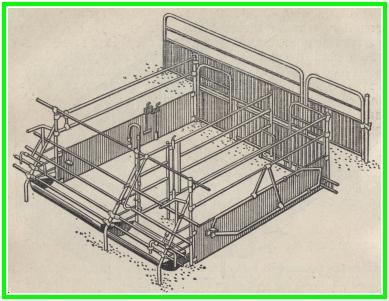 Свинарник-маточник устройство свинарника