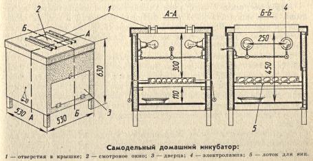 Самодельный инкубатор чертежи