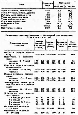 Сколько корма нутрия съест за год (кг на голову)