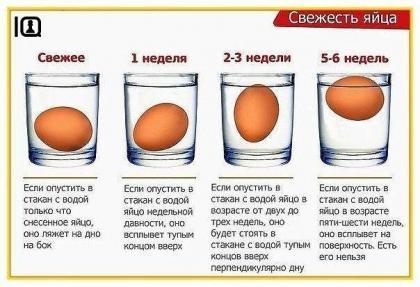 Определяем свежесть яйца.