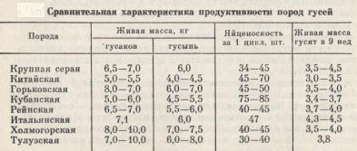 сравнительная характеристика продуктивности пород гусей