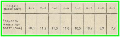 число поросят от возраста свиноматки, таблица