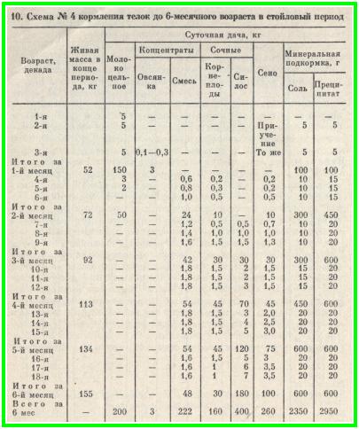 схема №4 кормления тёлок до 6-месячного возраста