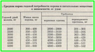 близости сколько корова съедает в день Иван Павлович