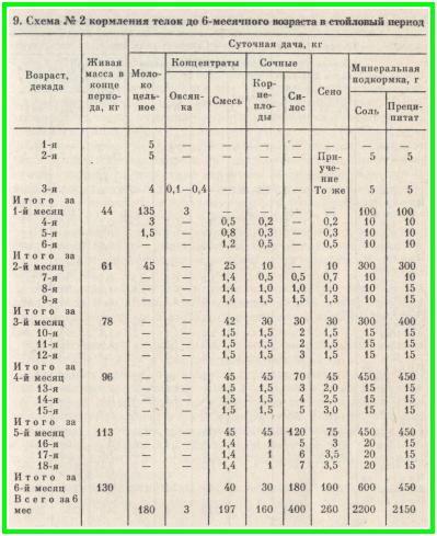 схема №2 кормления тёлок до 6-месячного возраста