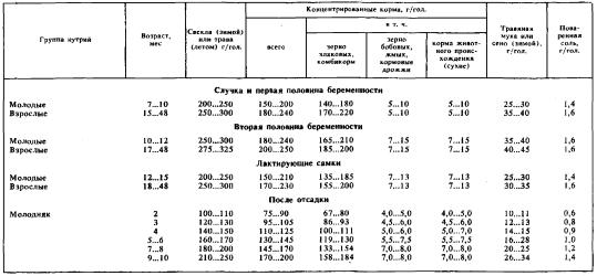 Типовые суточные рационы для зверей в различные производственные периоды