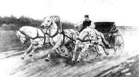 Тройка, премированная на Всемирной выставке в Лондоне в 1910 г.