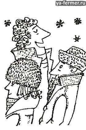 Зимой без шапки